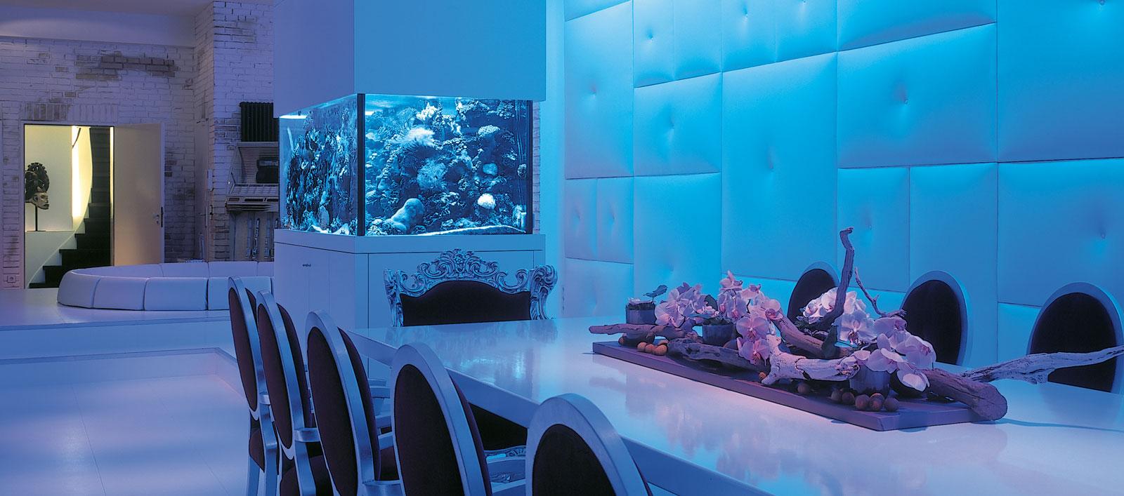 aquarium by amblard. Black Bedroom Furniture Sets. Home Design Ideas